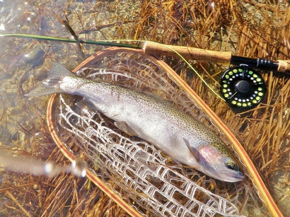 USac Winter Fishing 005.JPG