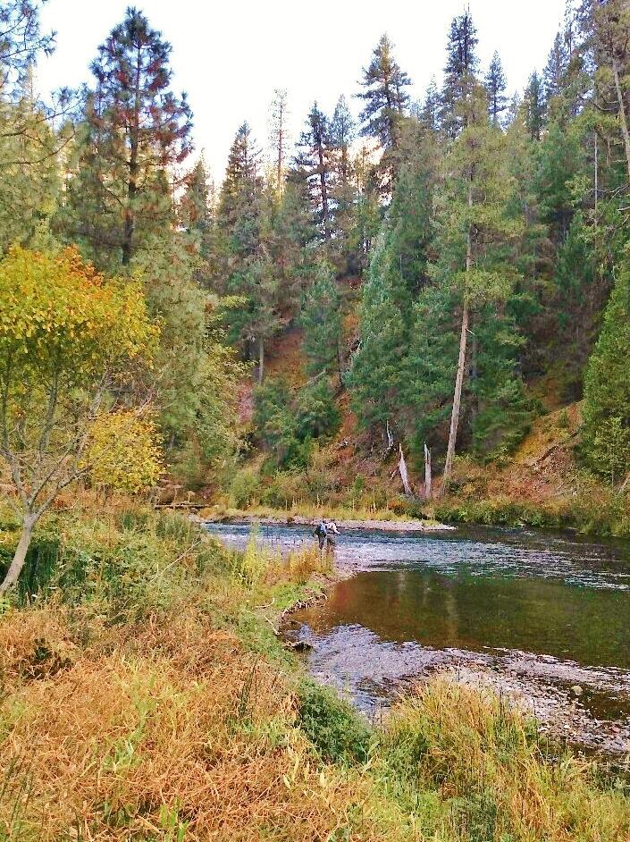 McCloud Fall Photo by Rick Cox