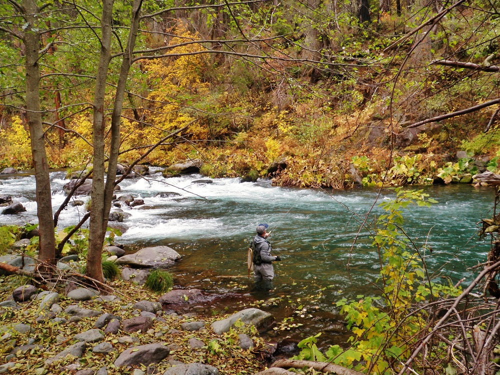 Fall On The McCloud Photo by Rick Cox