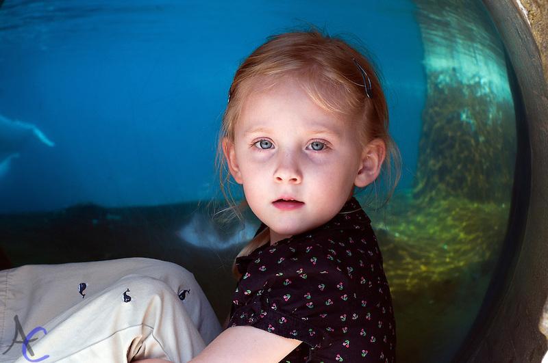 Connecticut Child Photographer
