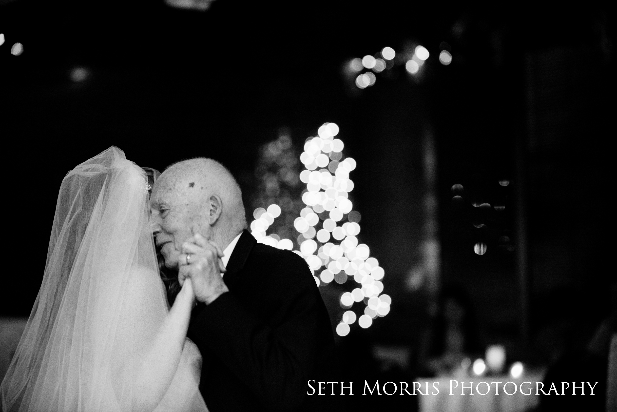 starved-rock-winter-wedding-chicago-illinois-71.JPG