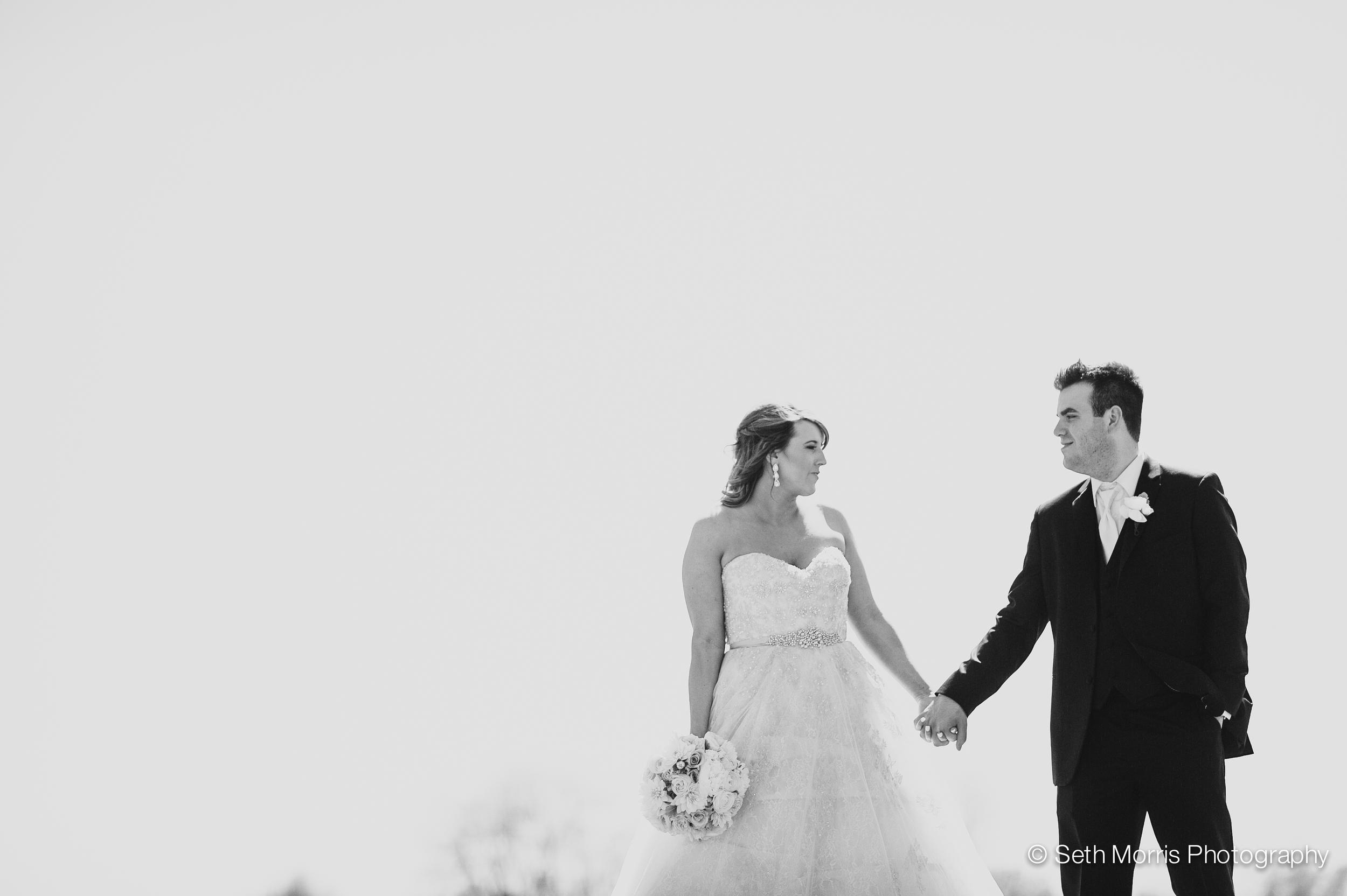 metamora-fields-wedding-photographer-peoria-145.jpg