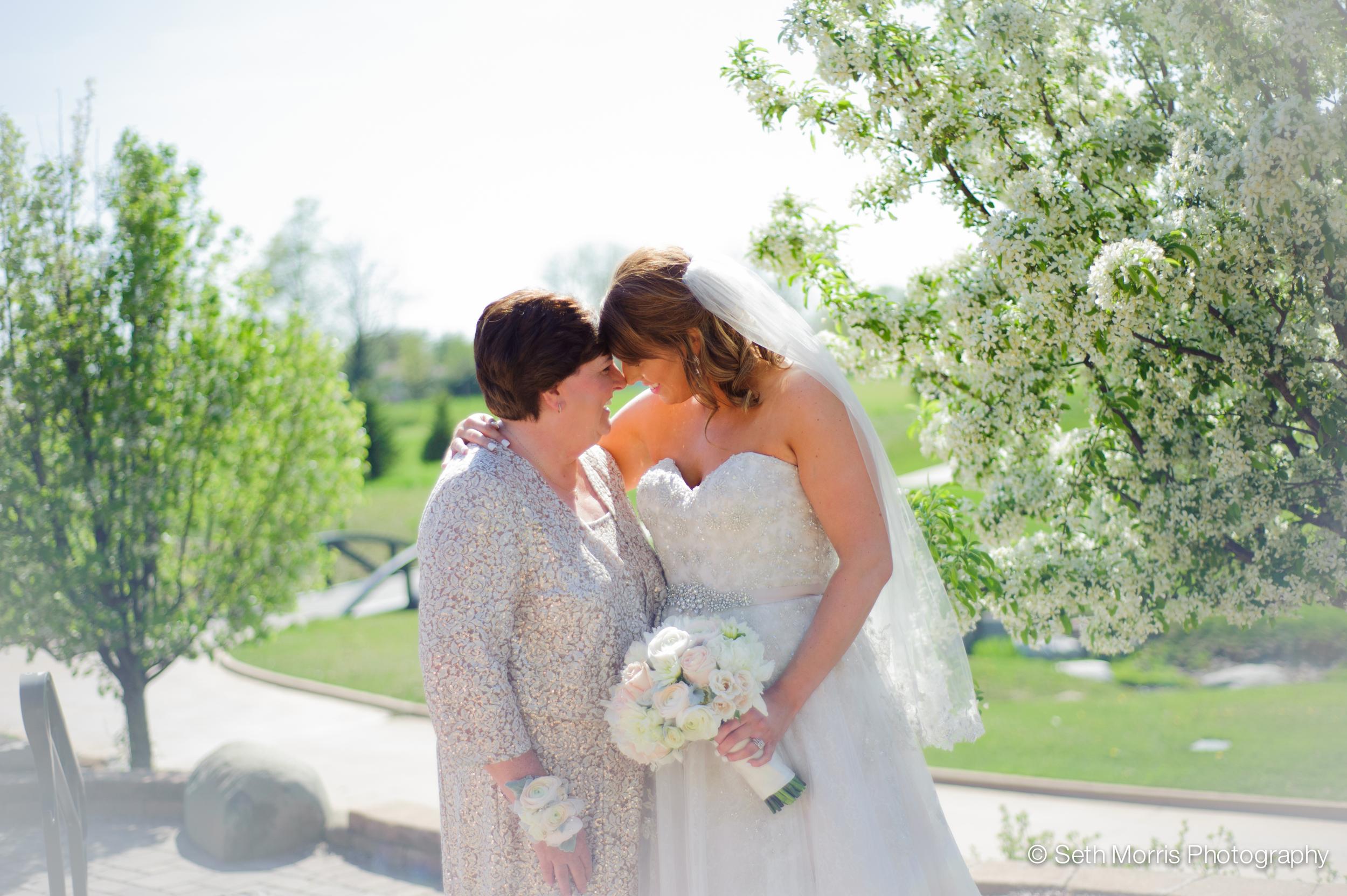 metamora-fields-wedding-photographer-peoria-152.jpg