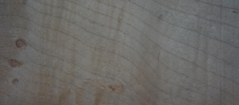 pricklysauce veneer logo - Off