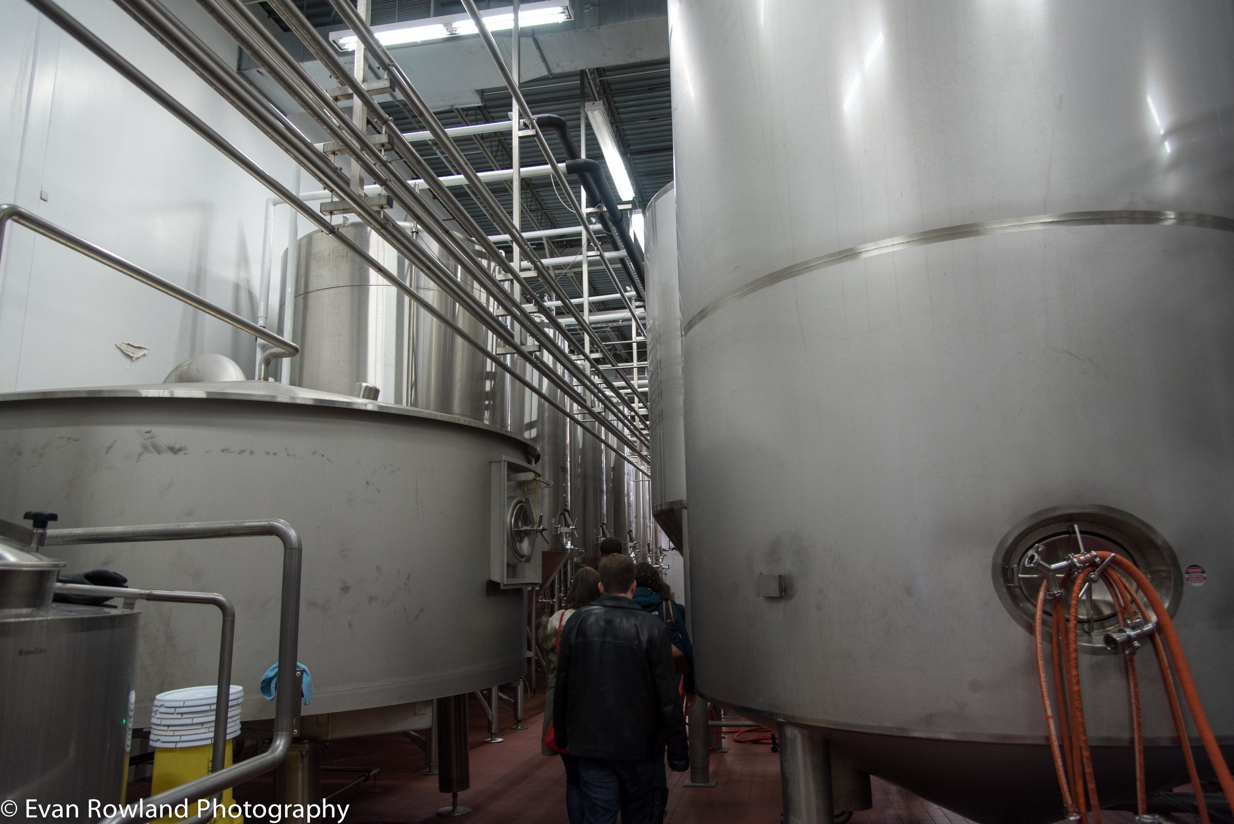 whirlpool and fermenters