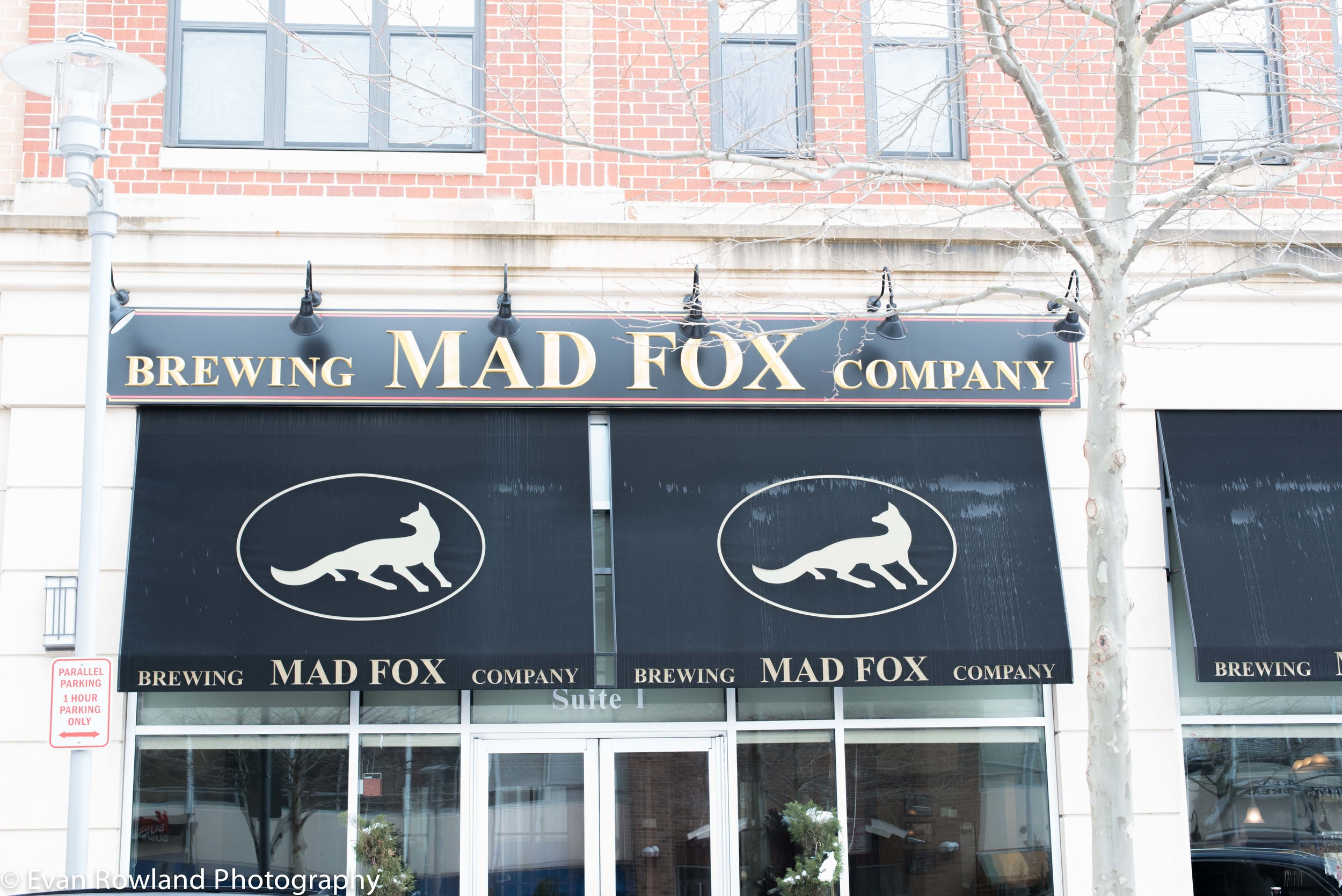 Entry to Mad Fox