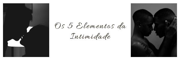 Os 5 elementos da Intimidade.png