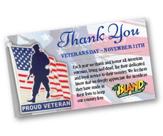 Veterans Day Pin
