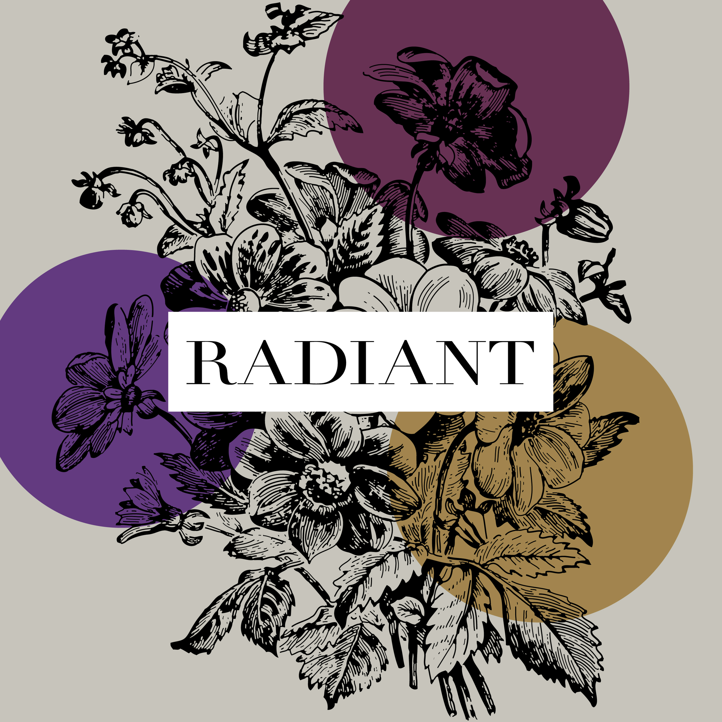 Finished Project: Radiant // brianakapper.com