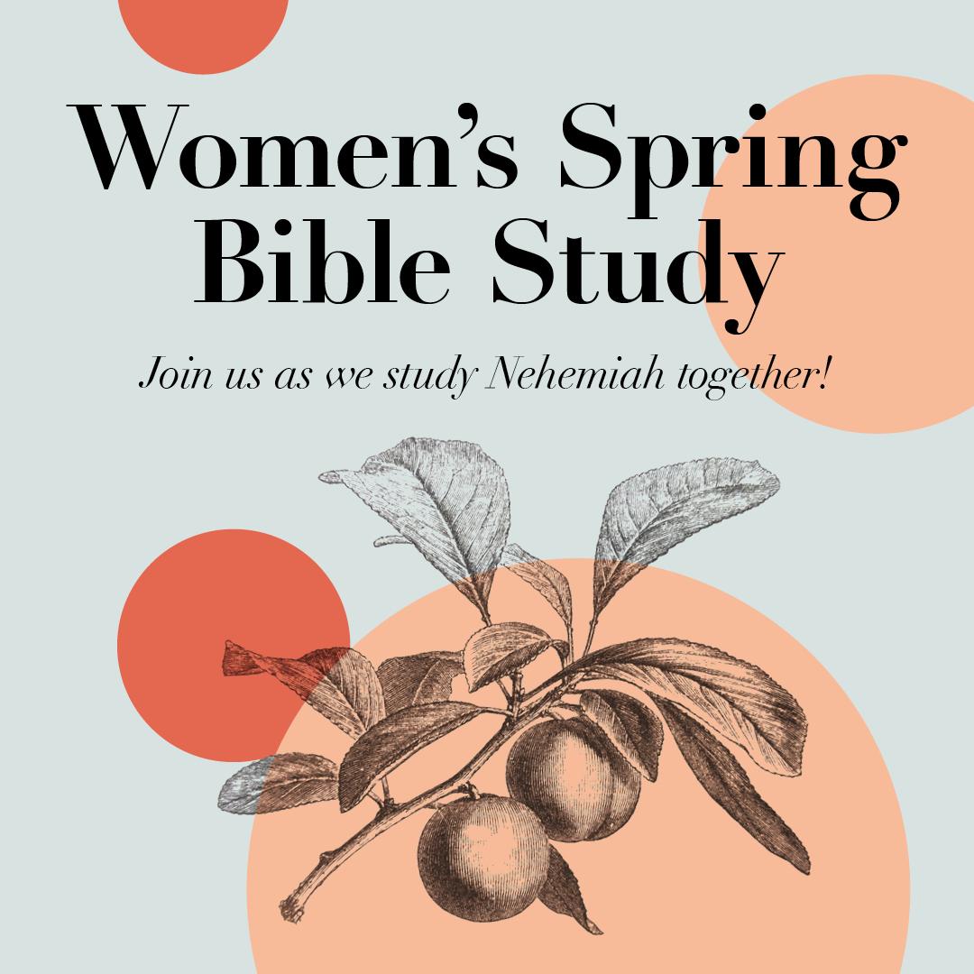 Bible-Study-2019-Spring-MT-Instasquare.jpg