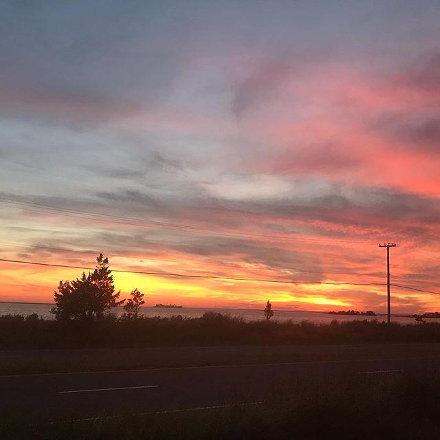 النهار، يحرق اوراقه كلها في زاوية السماء،  ويهرب