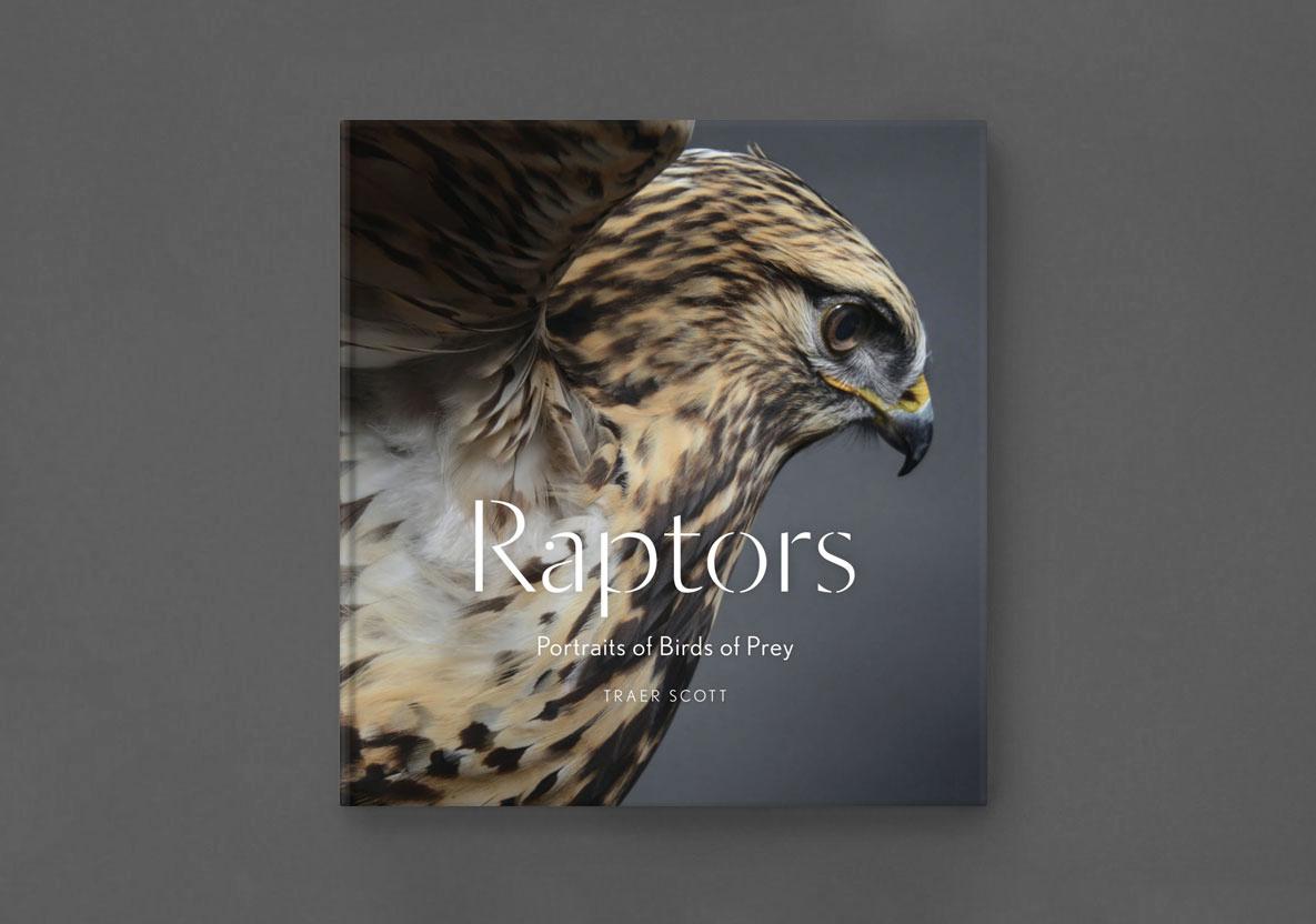 raptors.jpg