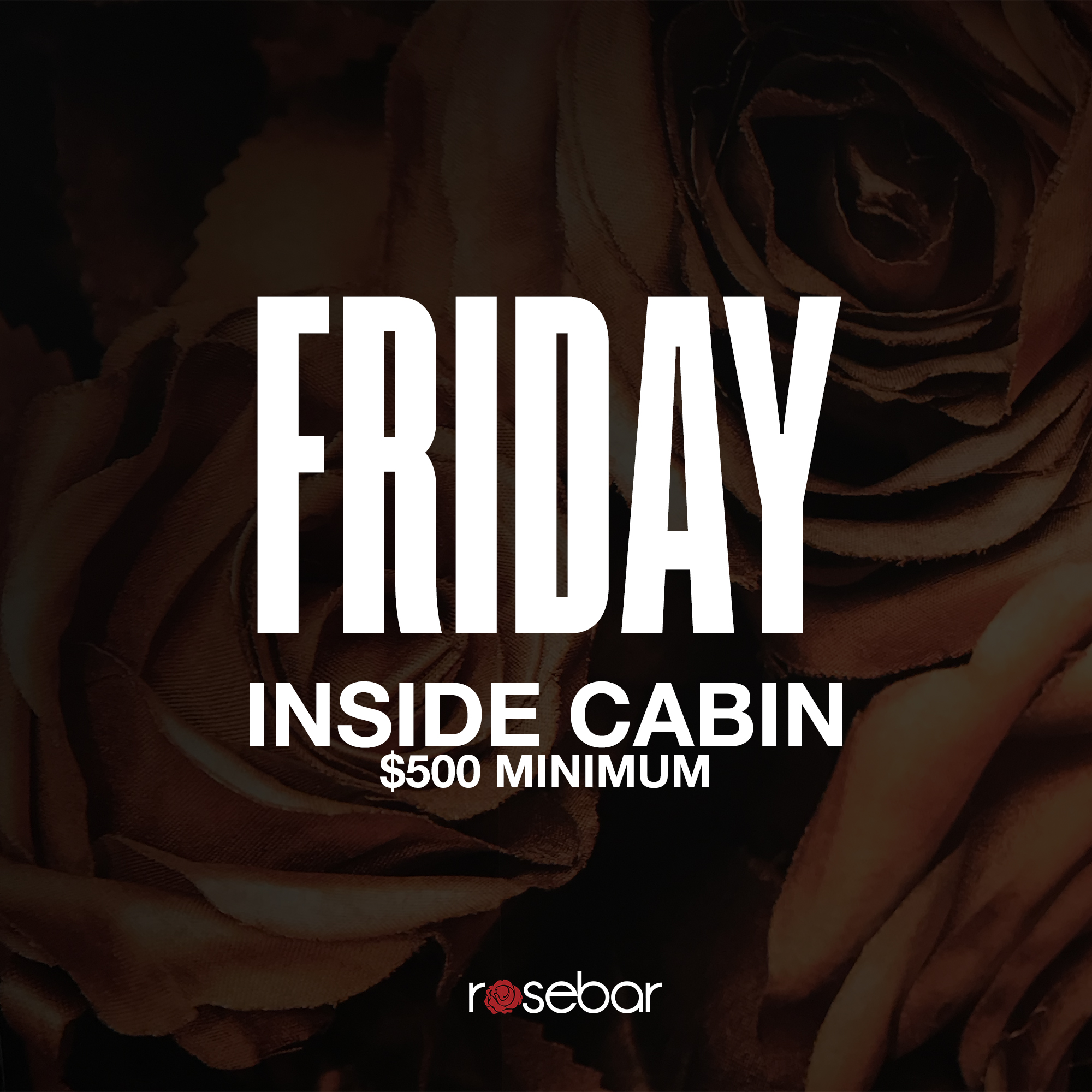 Friday-InsideCabin500.jpg