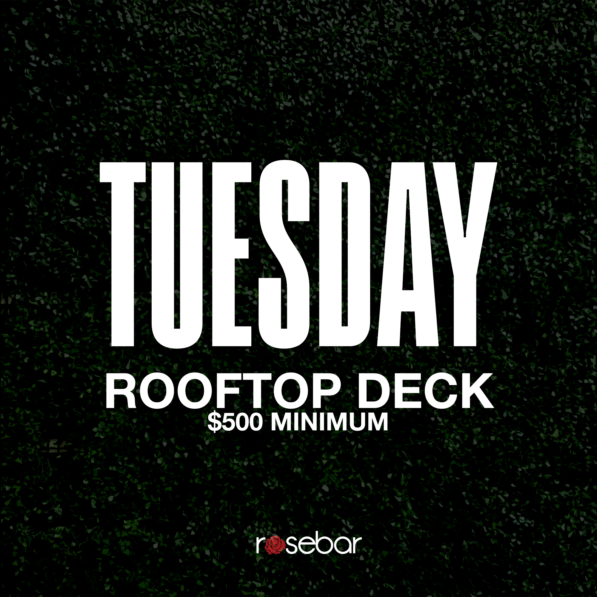 Tuesday-DeckOnly.jpg