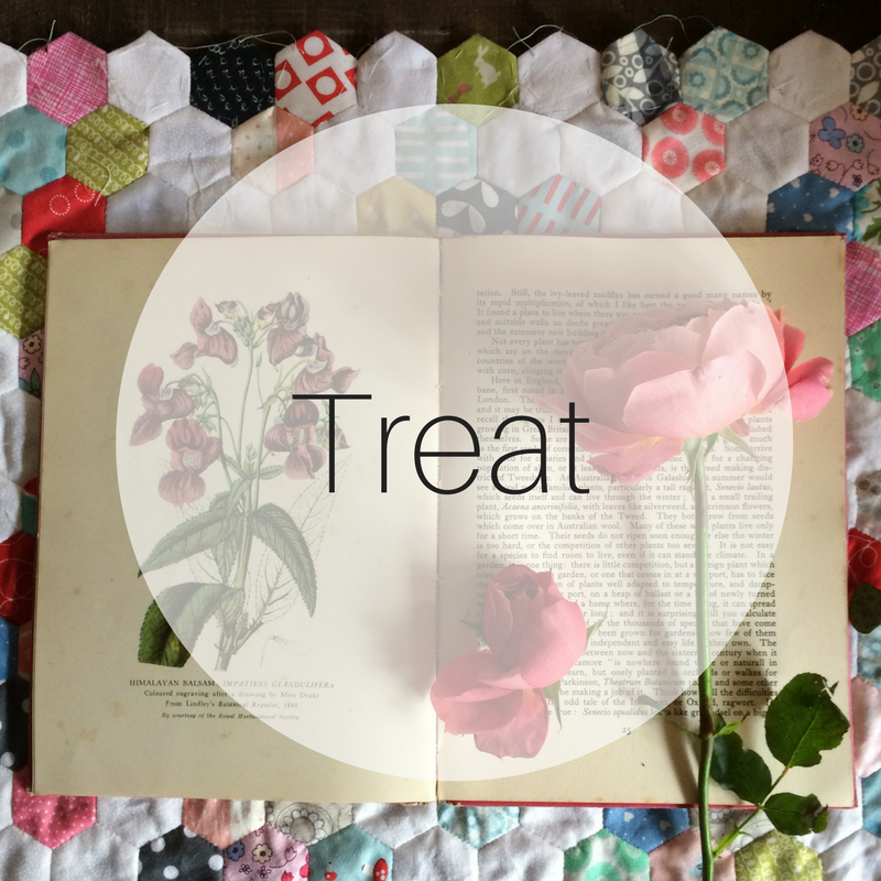 Treat   Gifts and extras