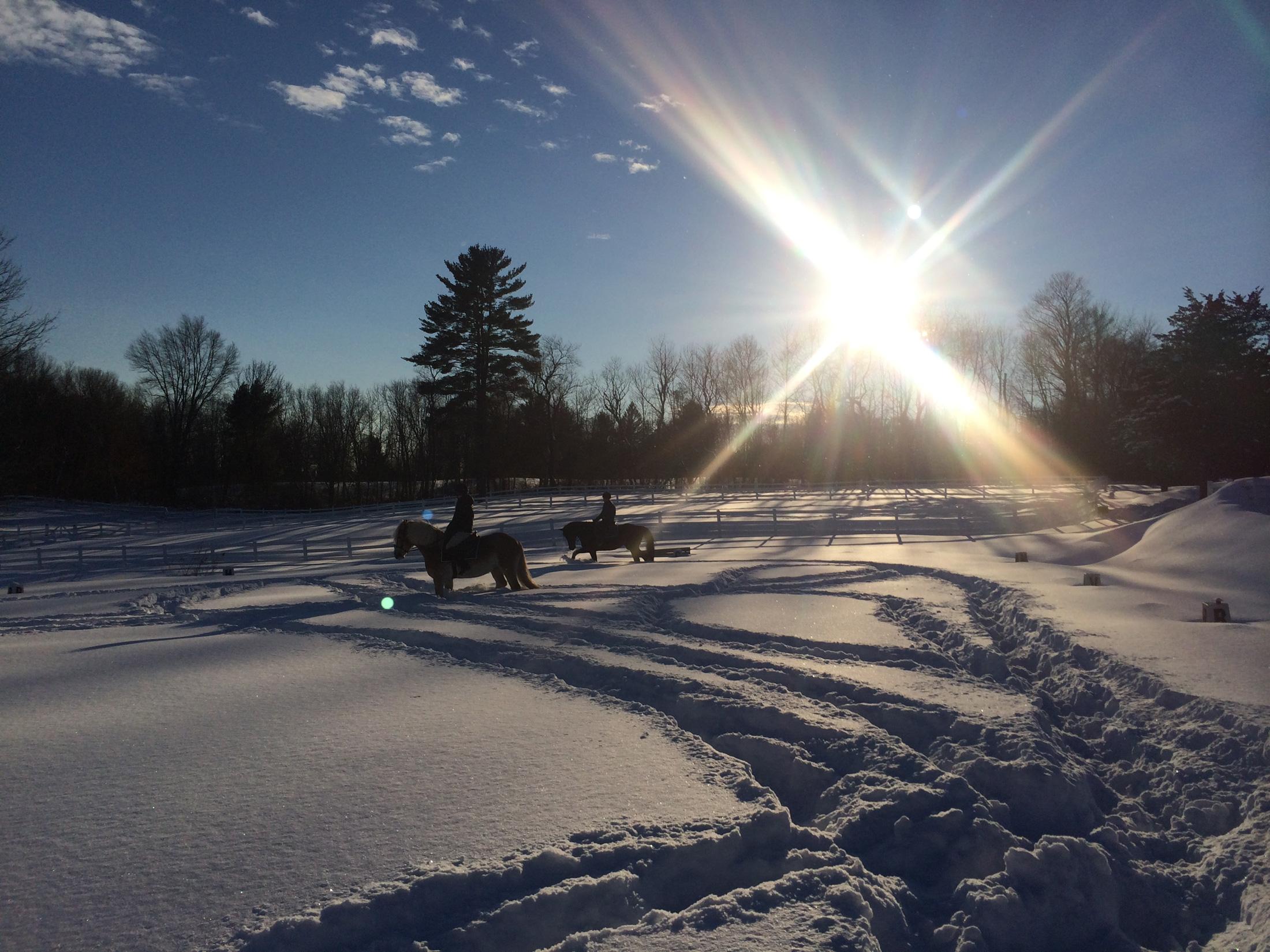 Winter-2200px.jpg