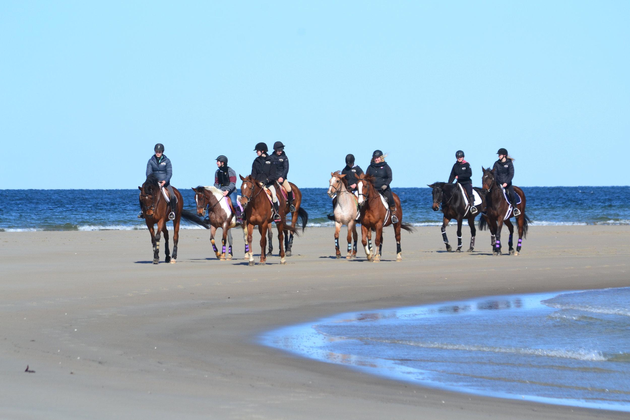 HHF Beach.jpg
