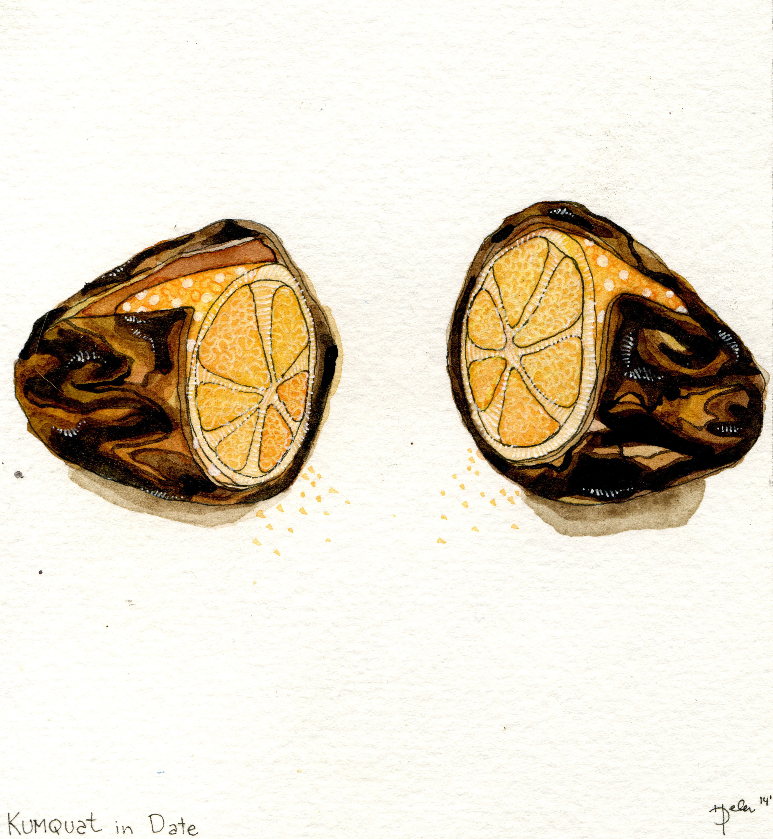 kumquat in date.jpg