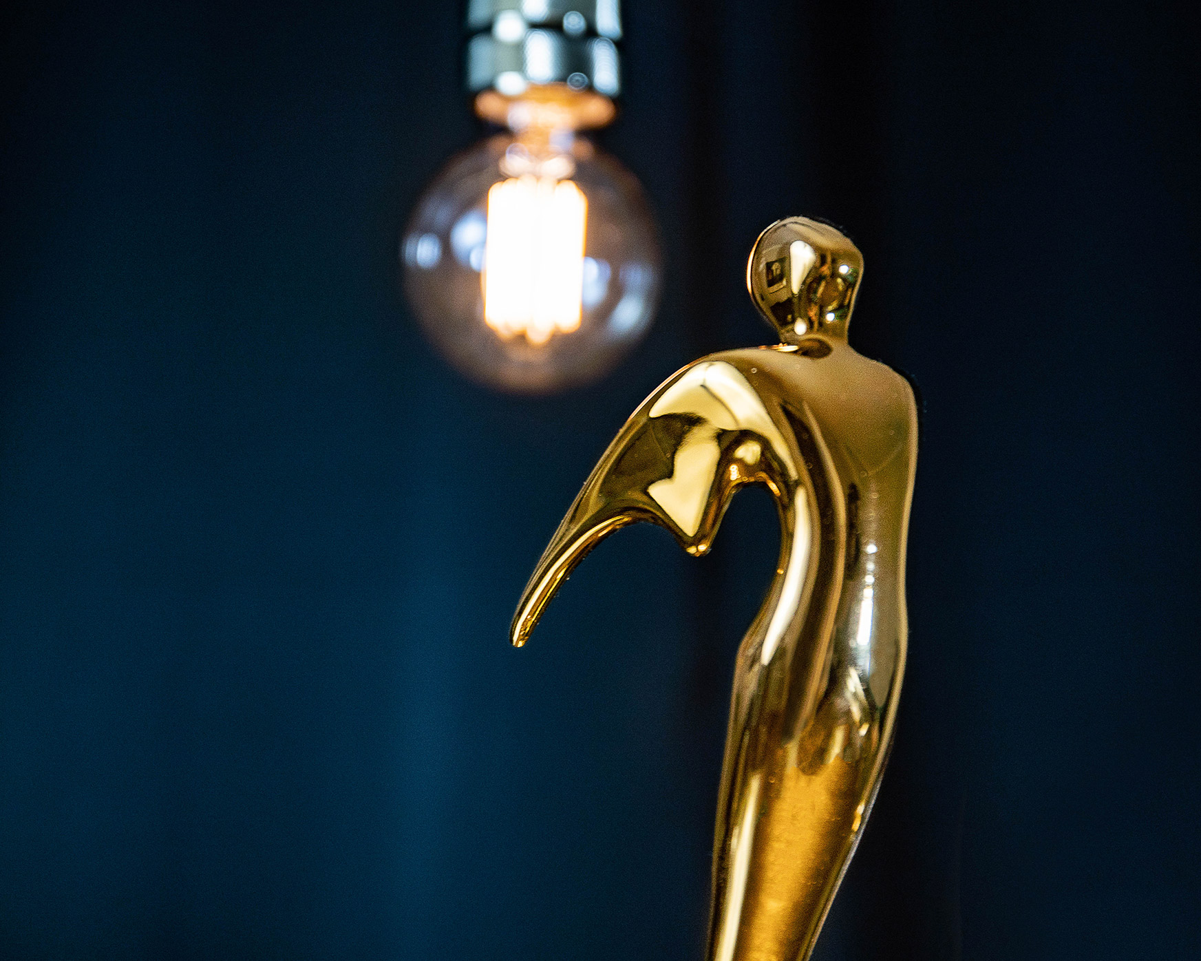 Erudite_Pictures_Award_Winning_Content_Strategy_Consultancy_Telly_Award_Ka-Lok_Ho.jpg