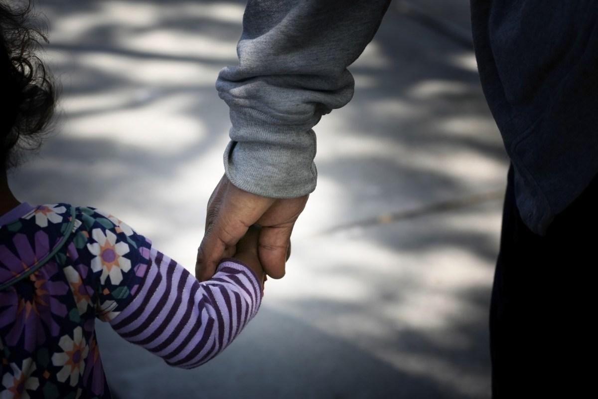 Radical Respect Parenting: 2-hour private consultation