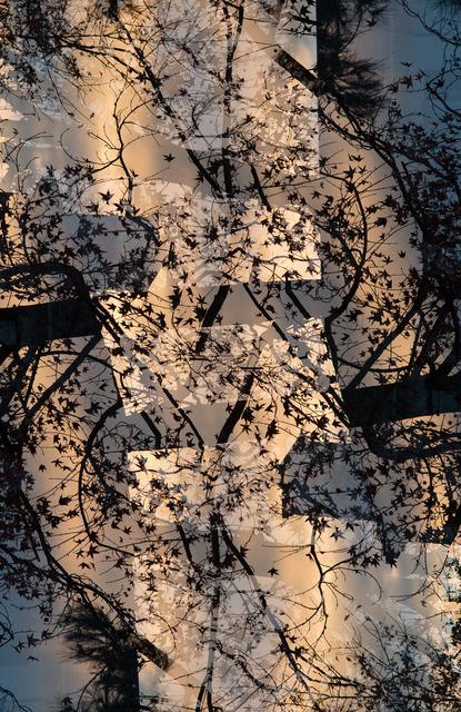 Adam Moskowitz  Counter-form Domestic (LA) II , 2014 Archival pigment print 40 x 30 inches