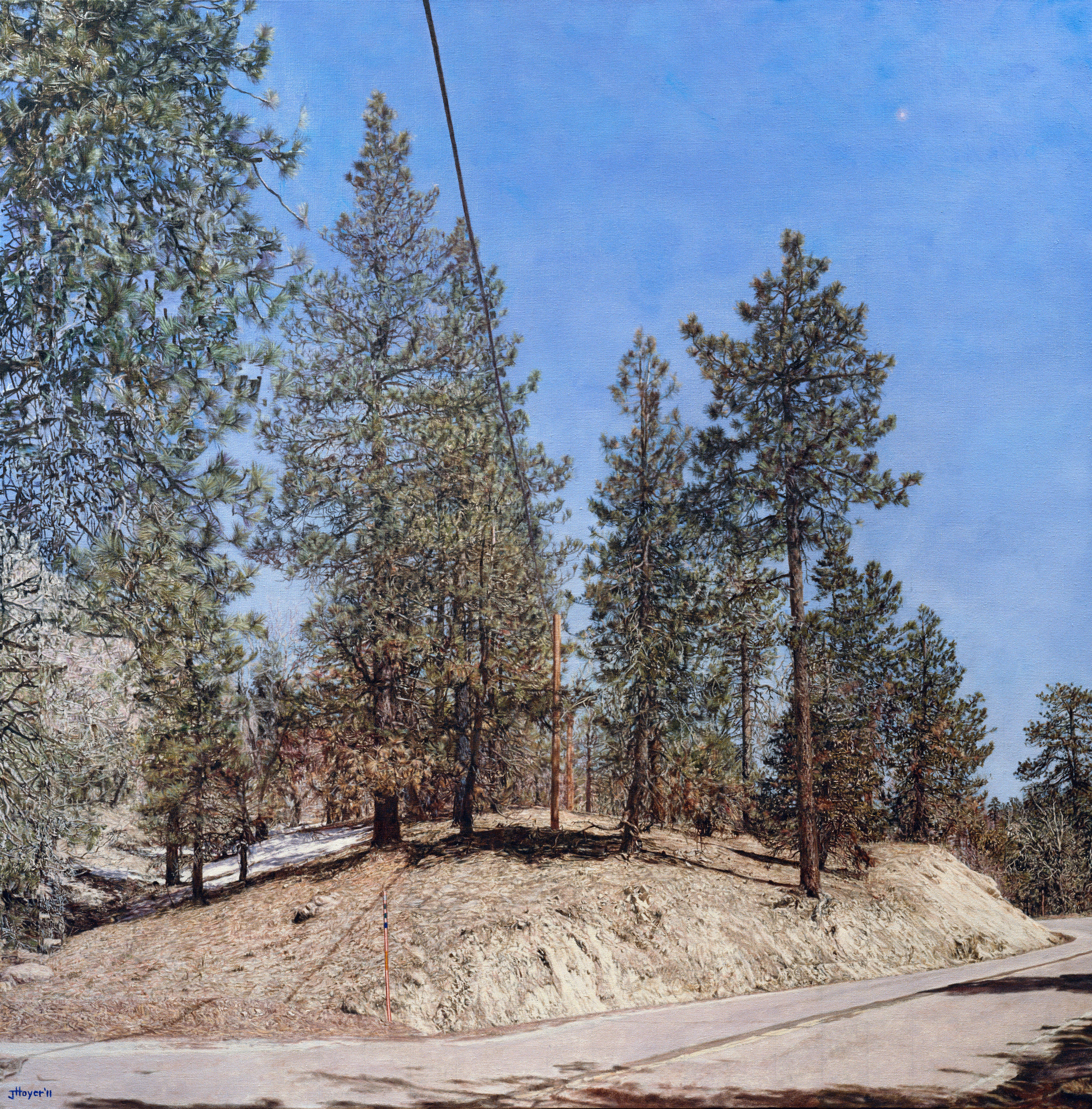 Big Bear Land Slab , 2011 Oil on linen 47.1 in X 47.9 inches