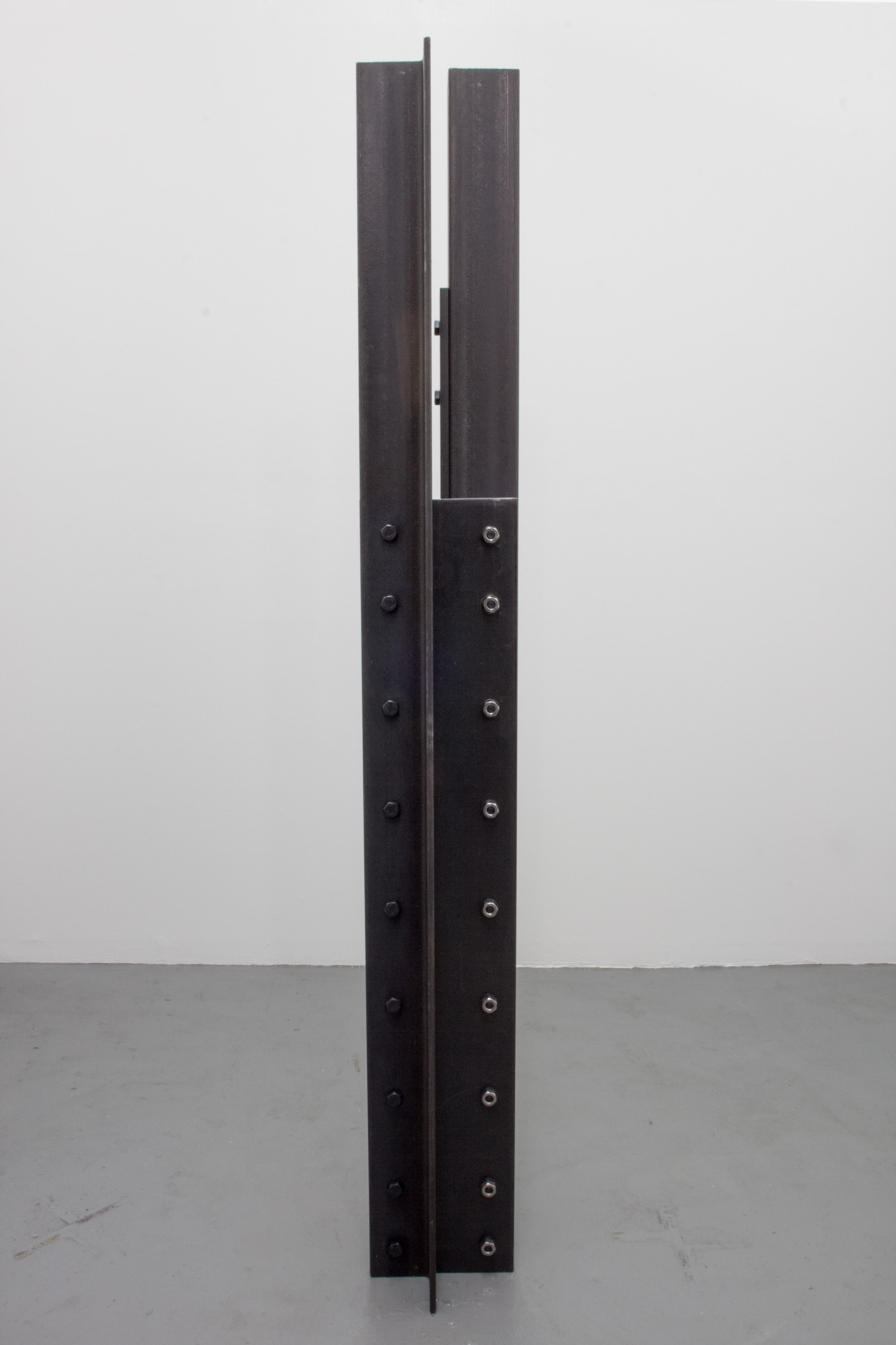 No One To Talk About Failure With , 2015 Steel, hardware 72 x 12 x 12 inches