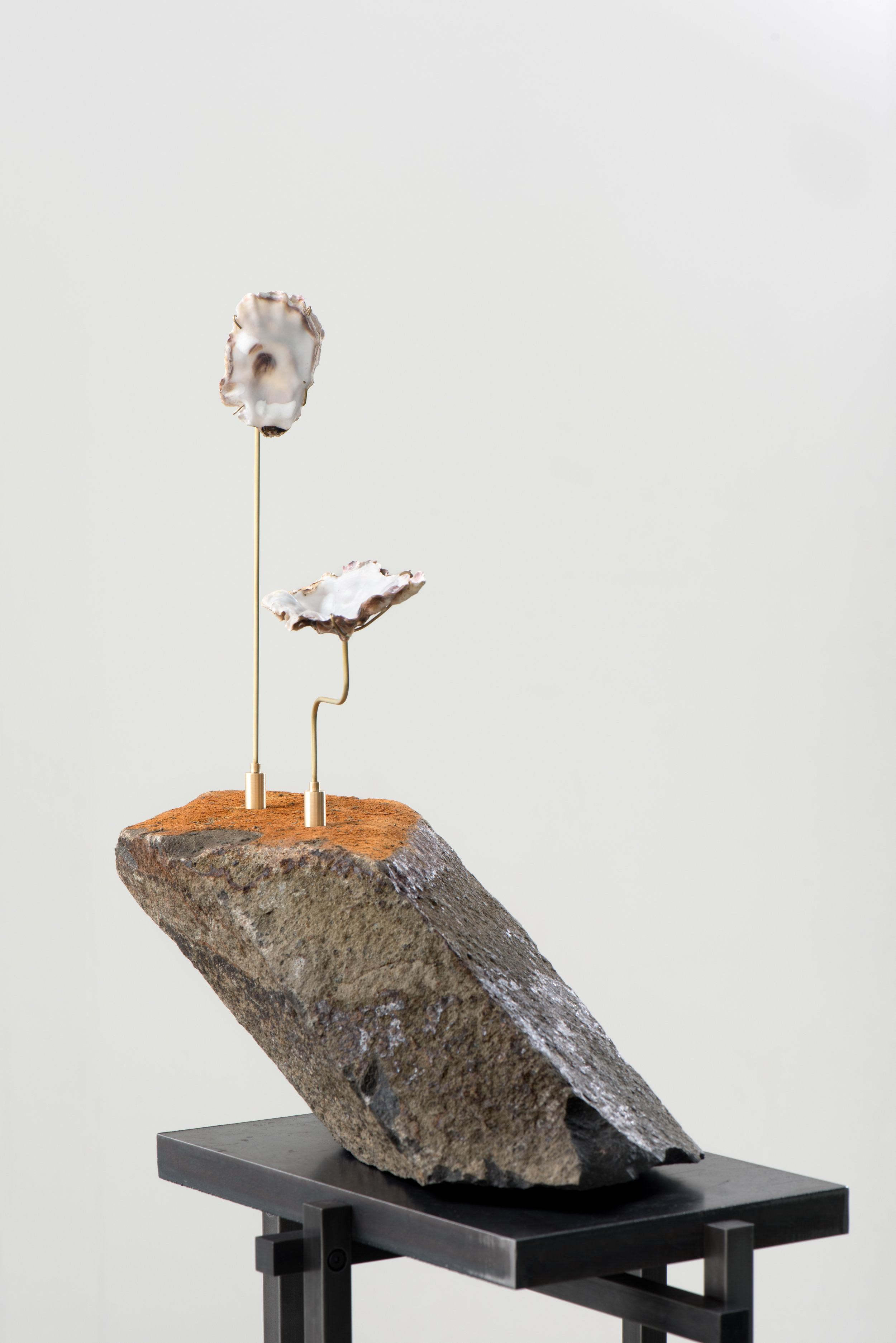 Stone Rafts Floating In A Sea of Magma  (detail), 2018 Steel, basalt, brass, oyster shells, and hardware 63 1/2 x 20 x 8 3/4 inches