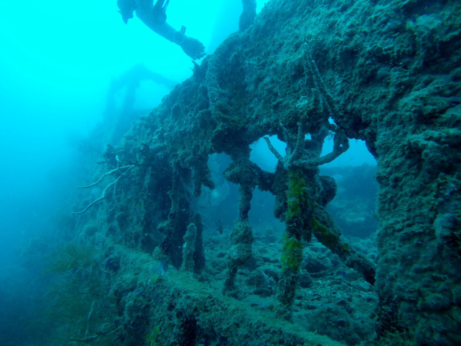 Coron Wreck Diving