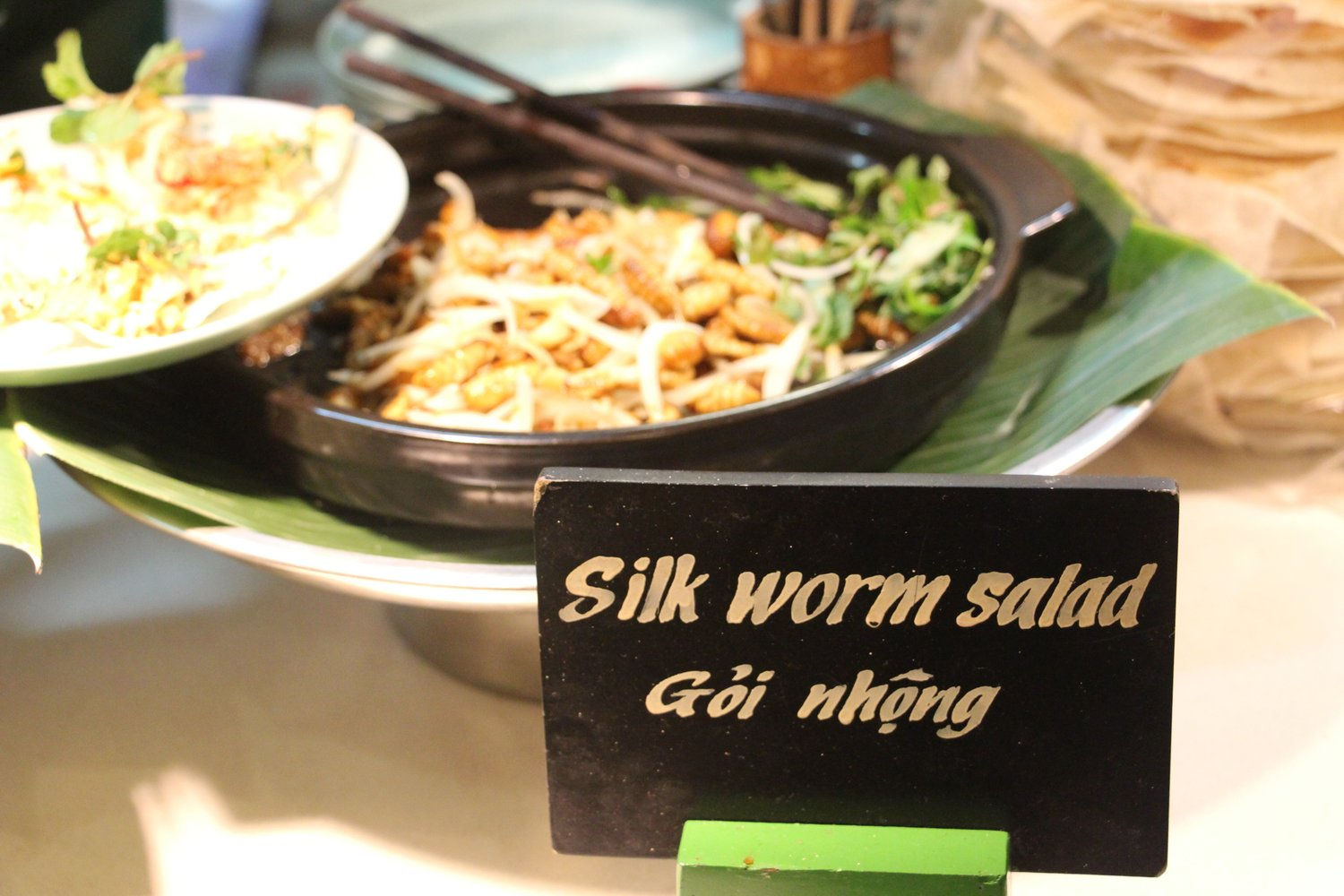 Silk Worm Salad