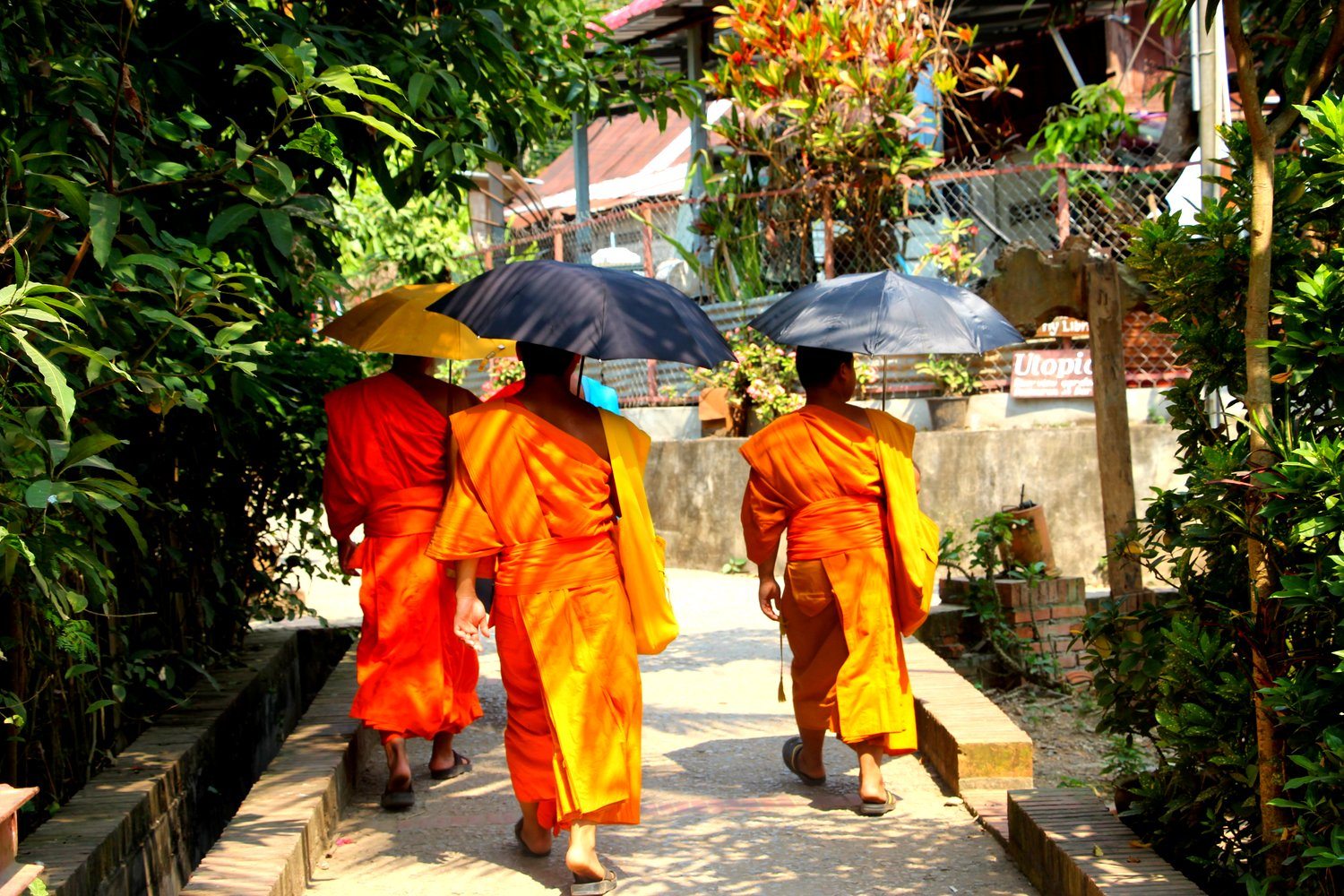 Laos Monks