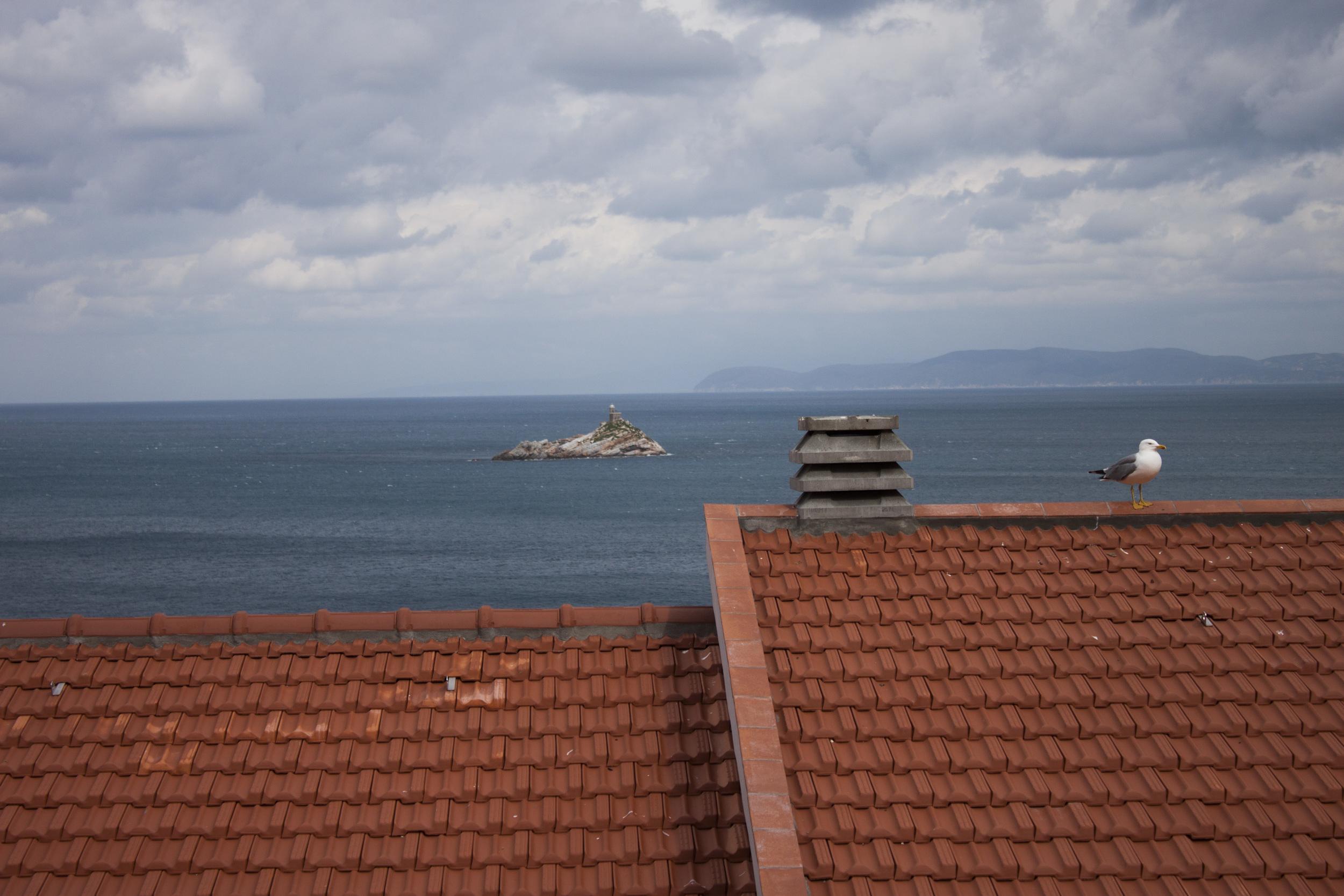isola_d'Elba_SEL__7.jpg