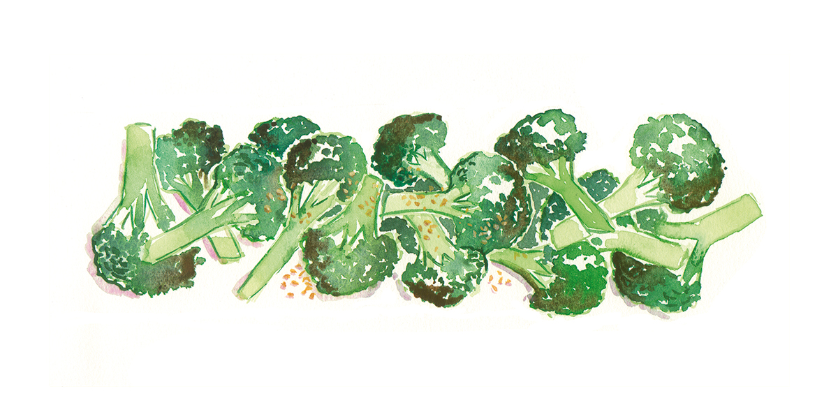 Broccoli Florets rp.jpg