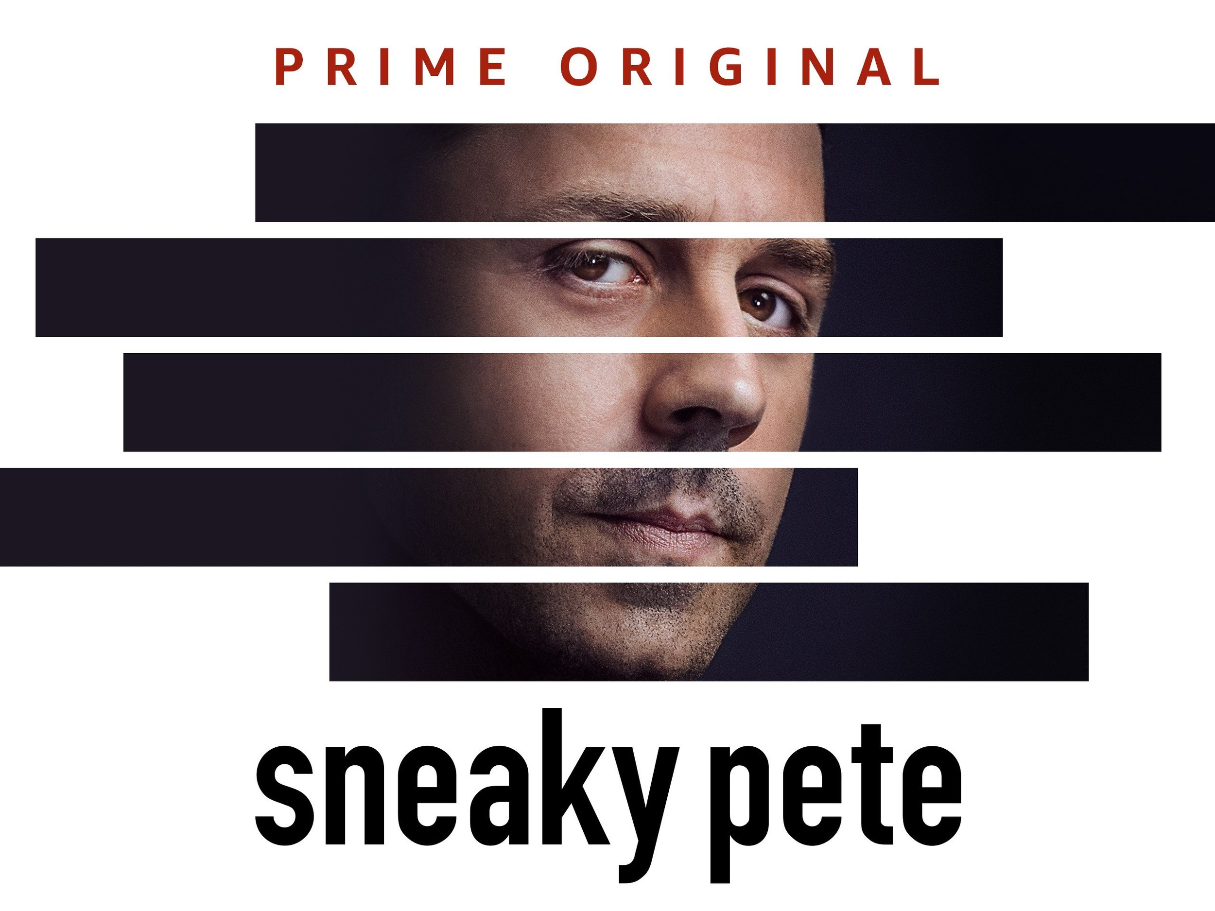 sr. technical advisor - Ava lends her thorough knowledge of the underworld of cons and its practitioners to the series Sneaky Pete, crafting characters and heists deeply rooted in real-life inspiration.  The series stars Giovanni Rabisi & Bryan Cranston.