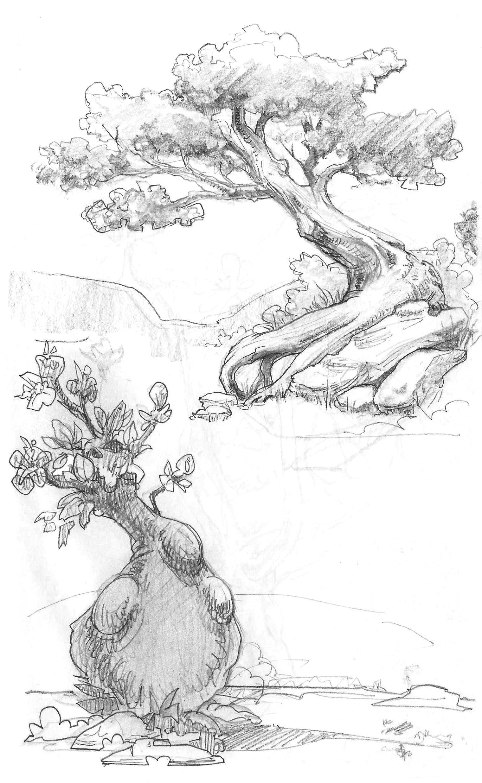 SketchTrees.jpg
