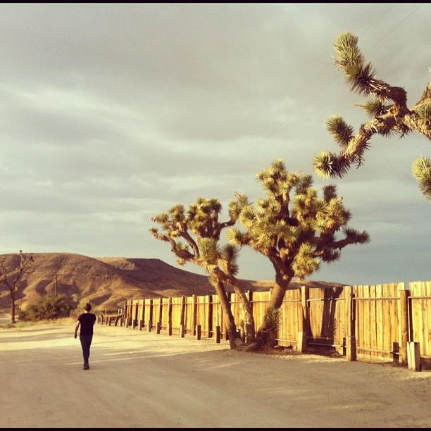 Pete walking to pioneer town (Taken with  Instagram )