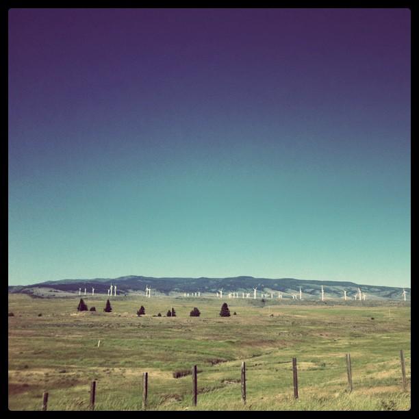 Eastern Washington (Taken with  instagram )