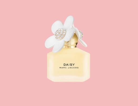 daisy6.jpg