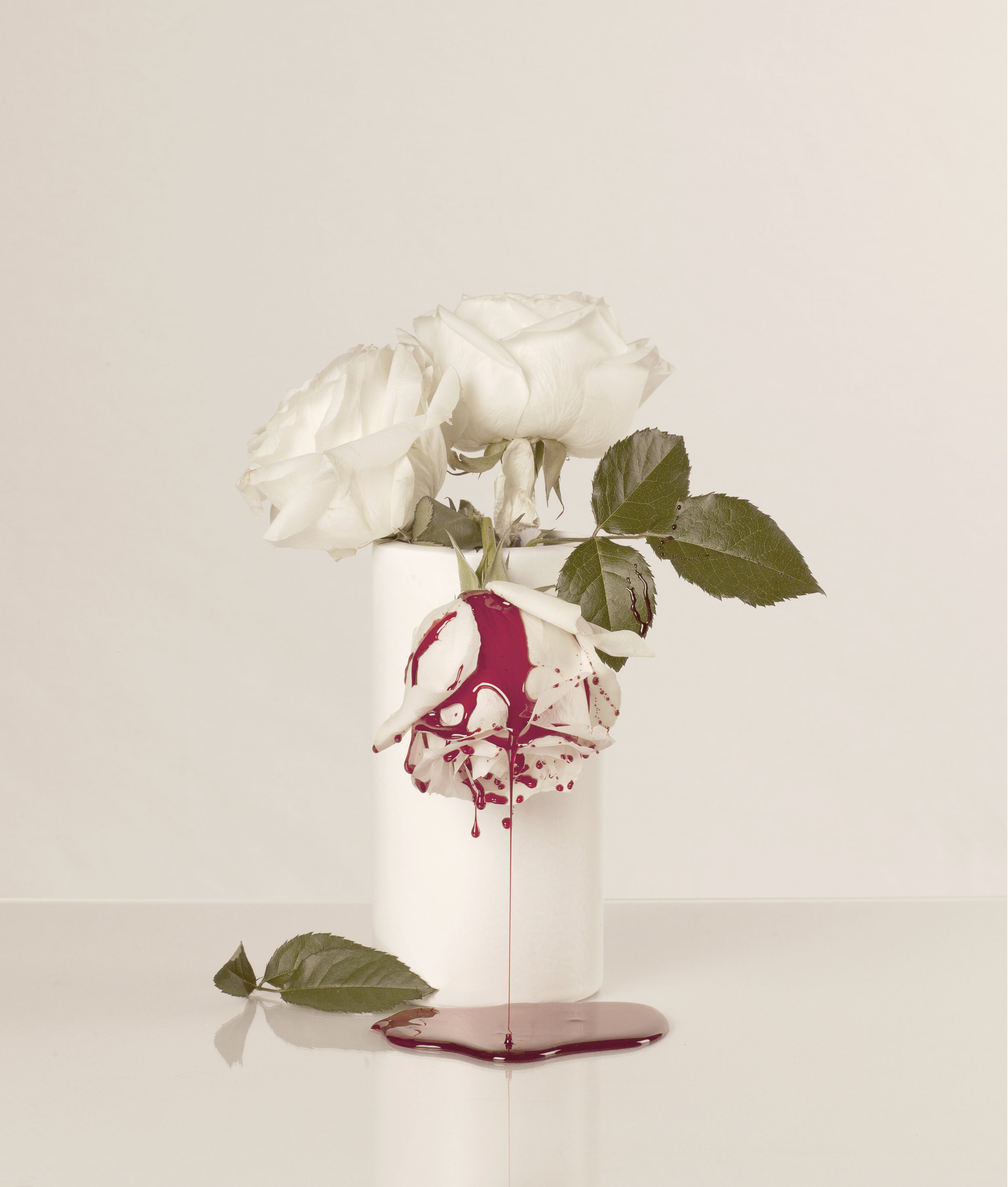 Blood & Roses (15) - colour photograph, edition of 5 + AP