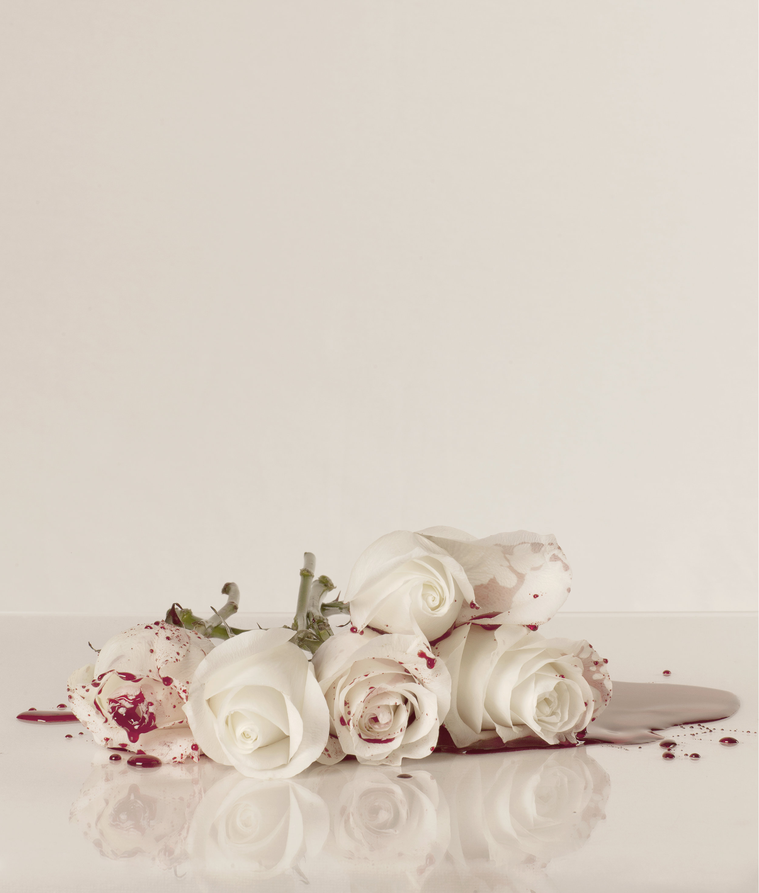 Blood & Roses (17) - colour photograph, edition of 5 + AP
