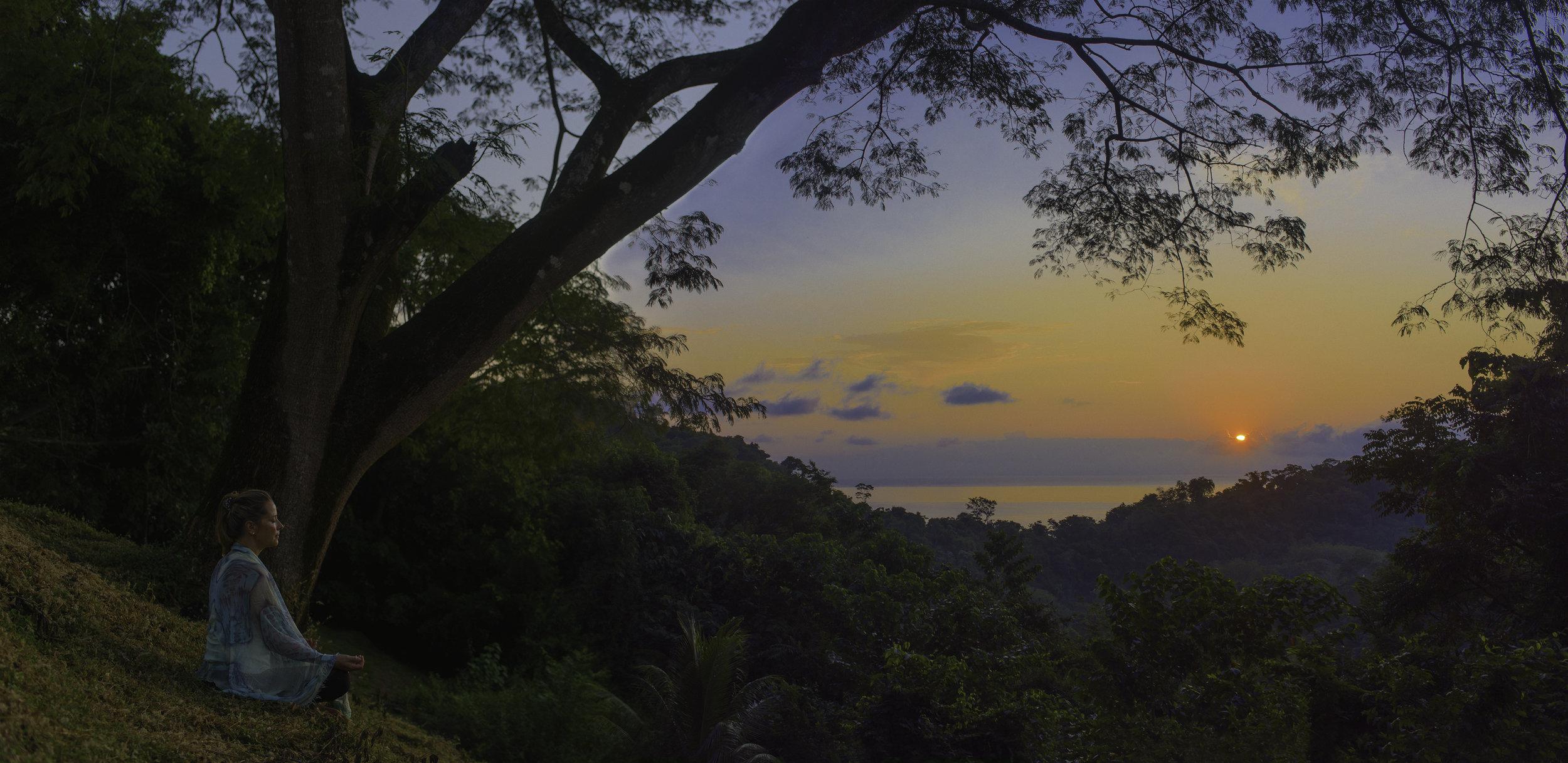 Sue-Sunrise-Tower-Edit.jpg