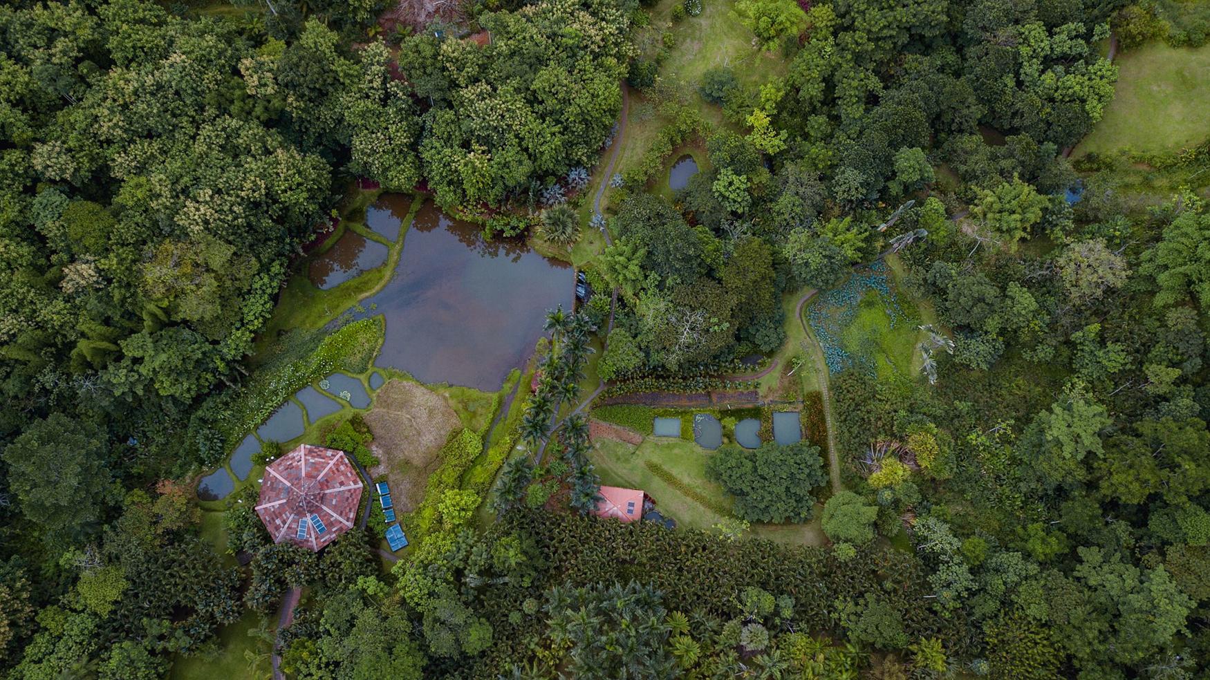 Yoga-Retreat-Photography-Costa-Rica-19.jpg
