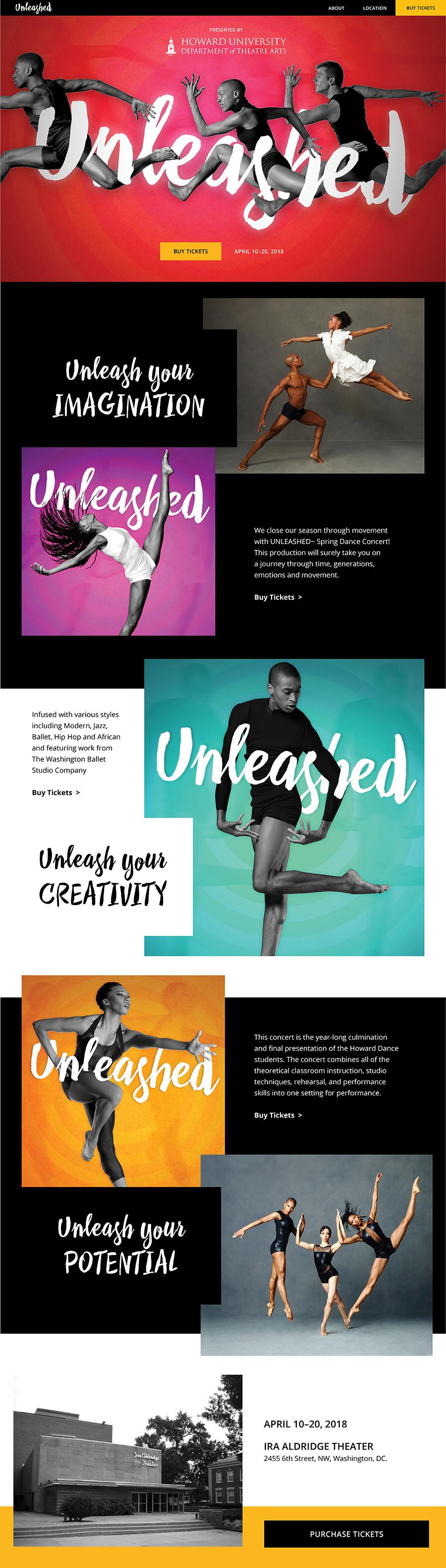 unleashed-dance-showcase-website