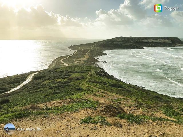 Do you know how different the nature around Sardinia is? This is from the west coast... check out the beautiful gallery of @alex_mura_86 #fantastic #nature #photography #coast #island #italia #sardegna #italy #vacation #hiking #sea #slowtravel #adventure