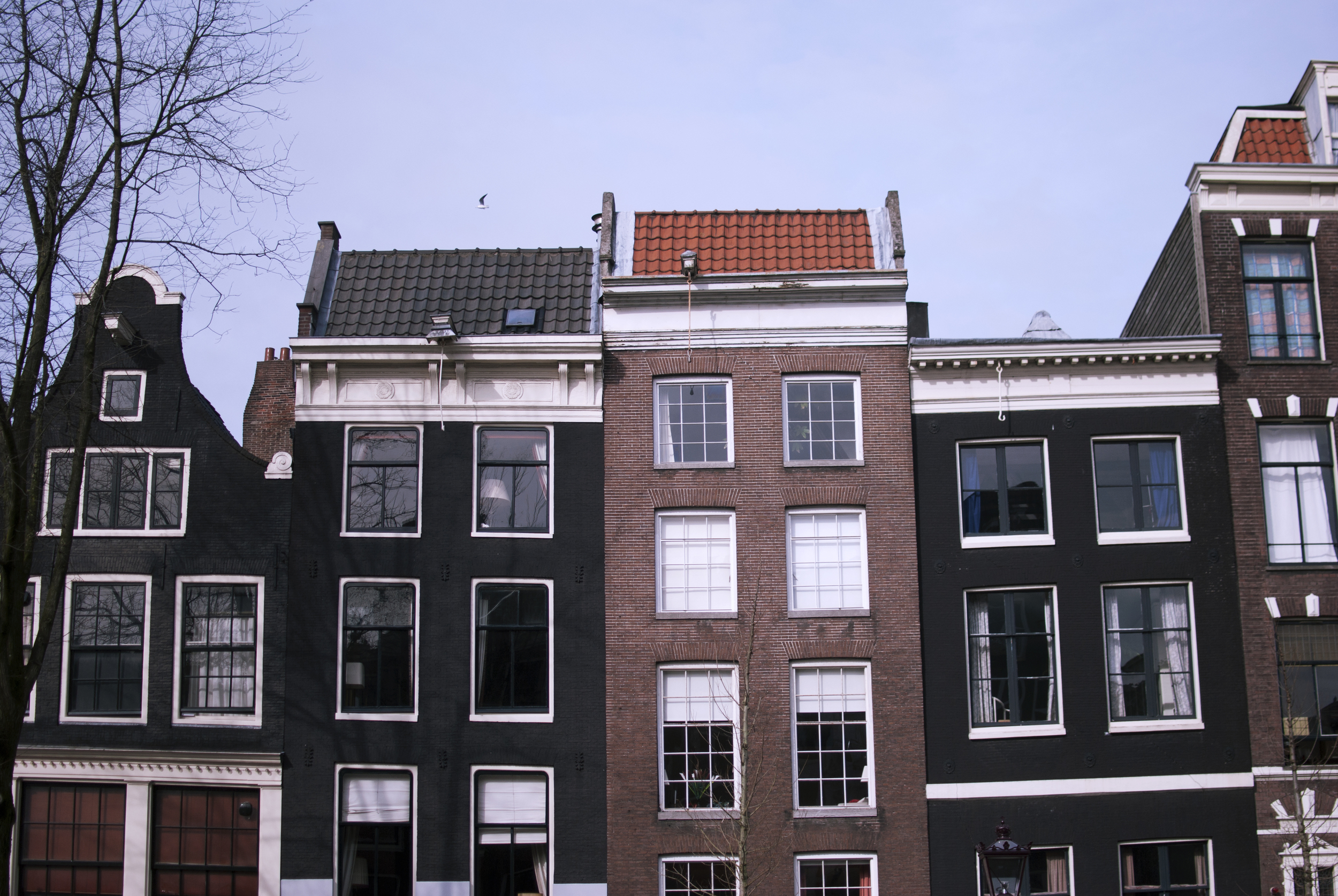 """<strong>Amsterdam</strong><a href=""""/amsterdam-travel-guide"""">NETHERLANDS »<a>"""