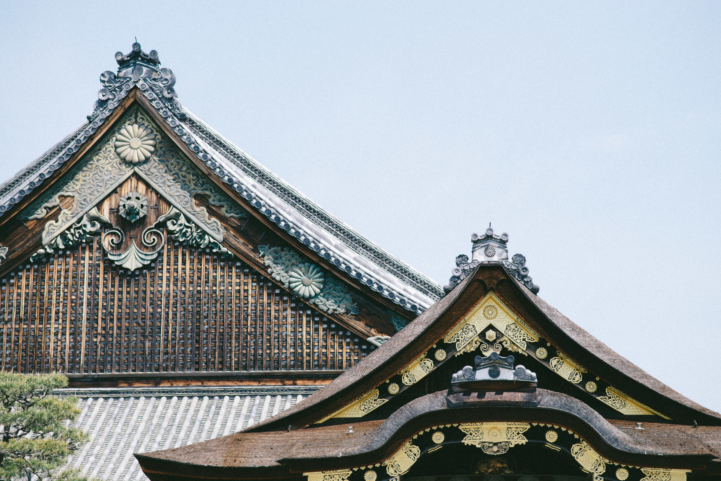 """<strong>KYOTO</strong><a href=""""/kyoto-travel-guide"""">JAPAN »<a>"""