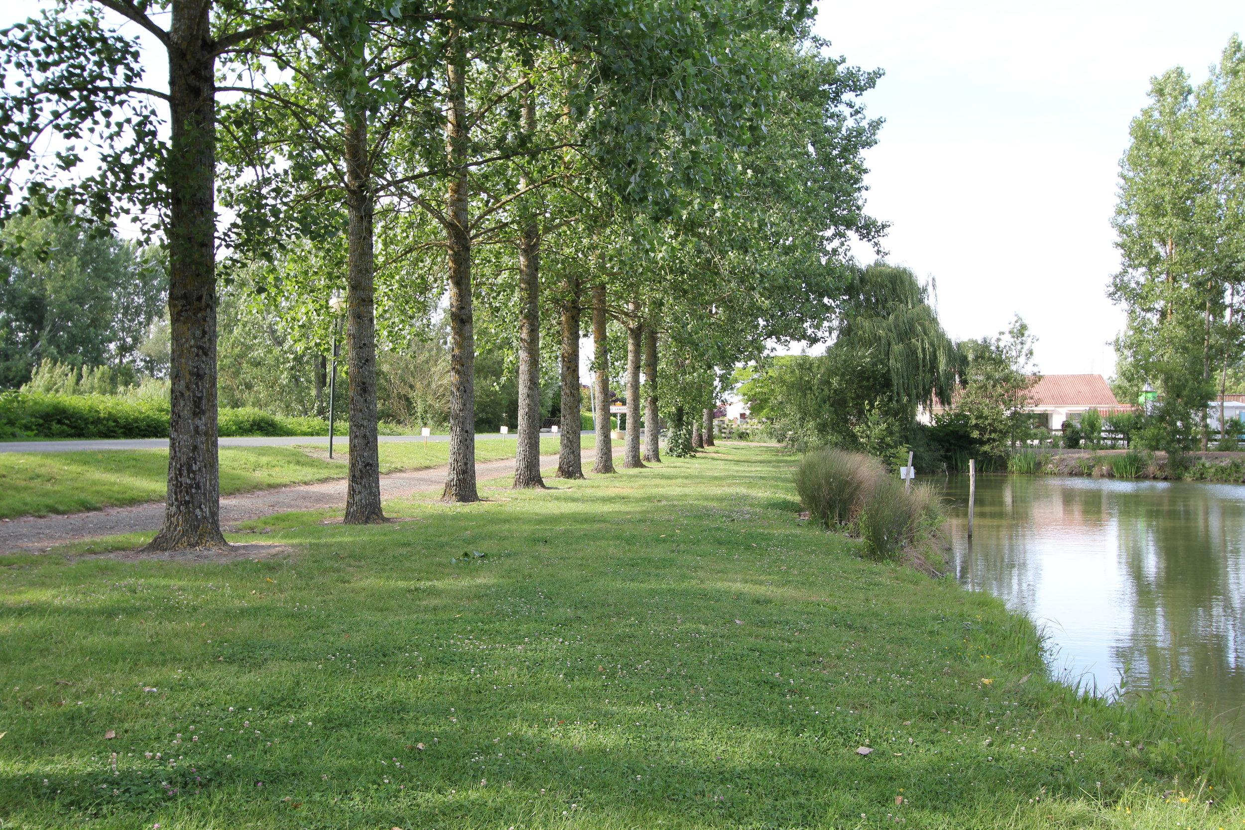 plan d'eau 3 Le Langon.jpg