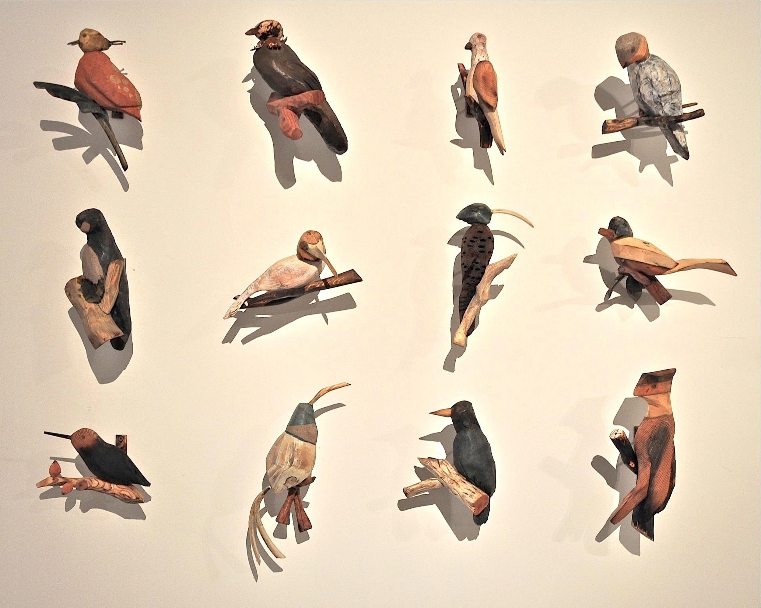 C.Condon_12Songbirds.jpg