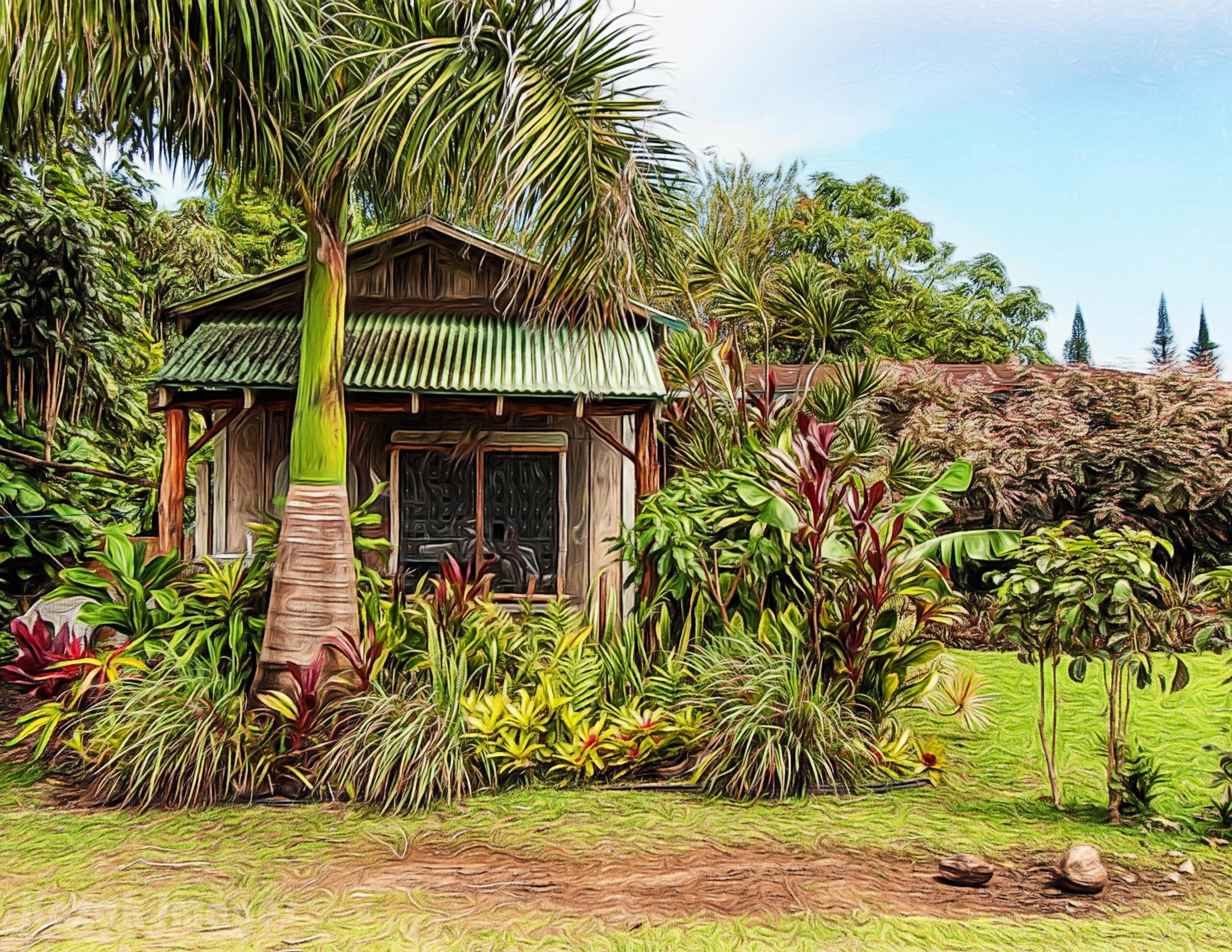 Hawaii_20040424039_01132015flattened_8.5x11.jpg