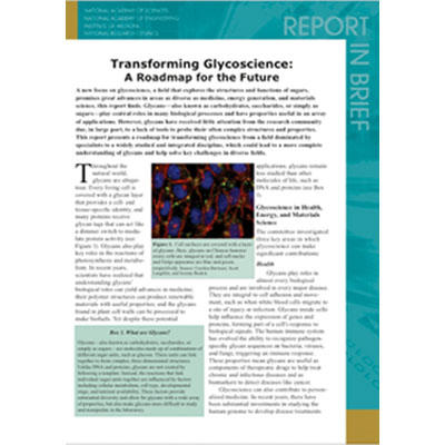 Glycoscience Report // NAS 2012